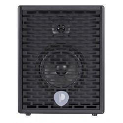 Prodipe Natural6 - combo akustyczne 140W